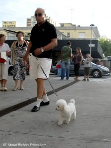 Man walking small white dog